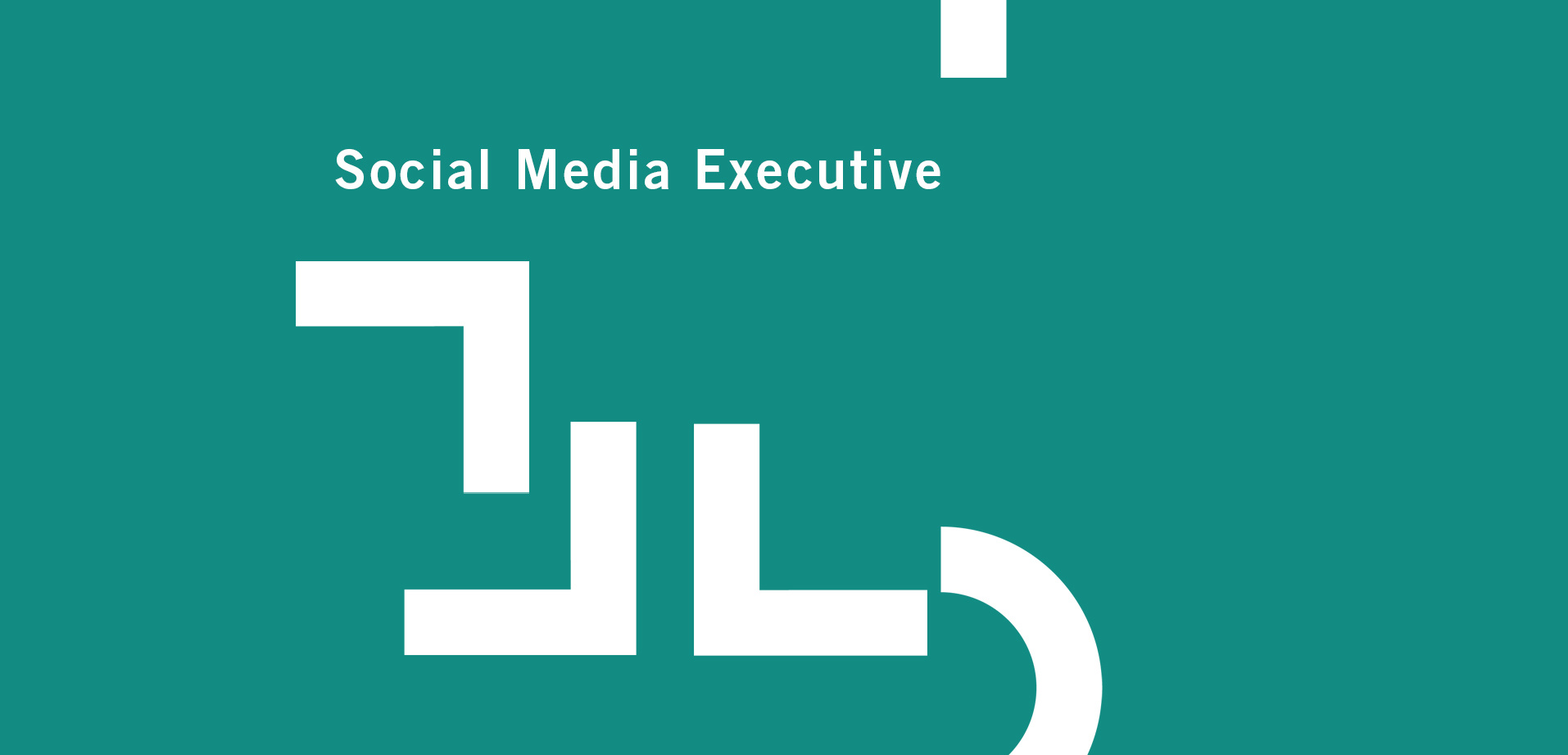 Social Media Exec